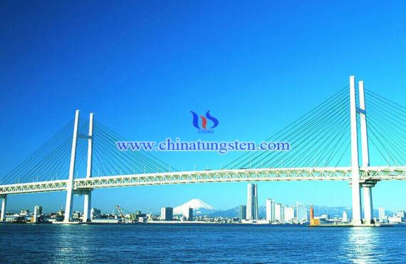 厦门大桥图片