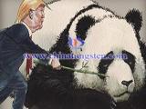 Trump-China photo