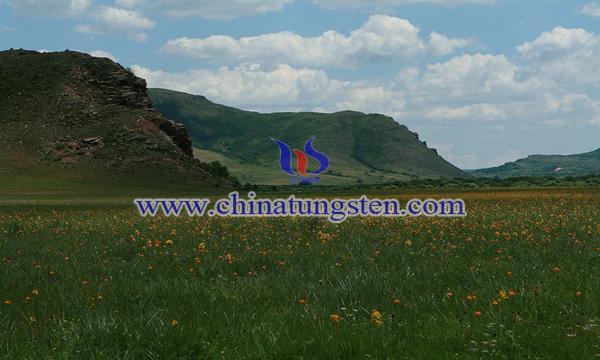 内蒙古太仆寺旗白石头洼钨矿图片