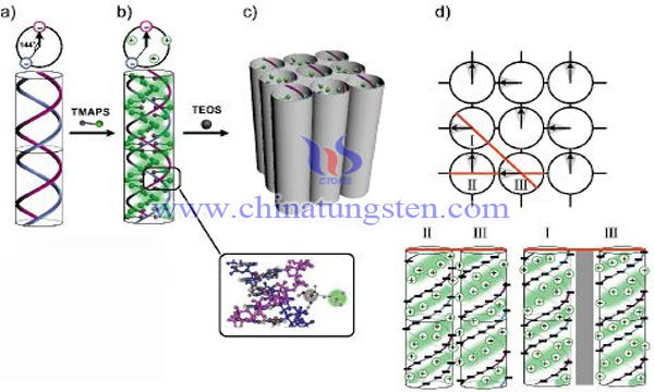 mesoporous tungsten carbide image