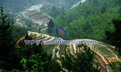西华山钨矿图片