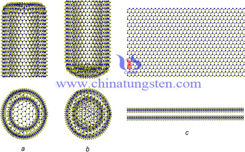 tungsten disulfide nanotube structure image-1