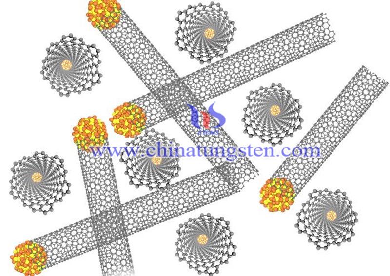 tungsten disulfide nanotube structure image-3