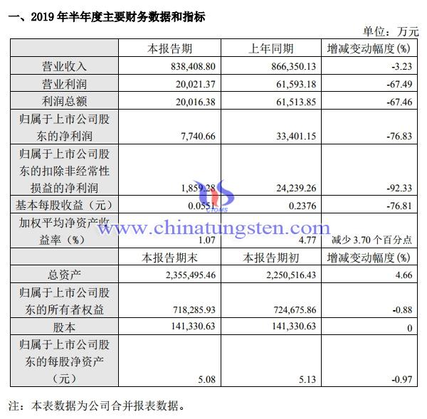 2019年上半年廈門鎢業主要財務資料和指標