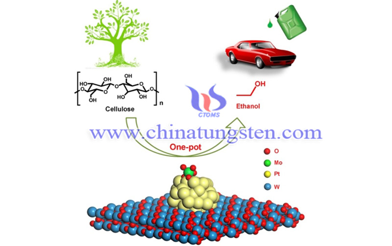 cellulose is efficiently converted to ethanol image