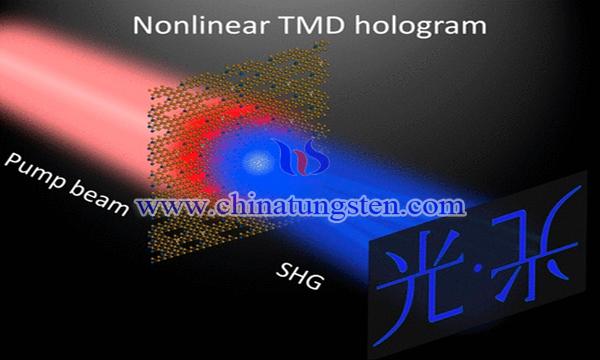 單層二硫化鎢製成最薄全息圖像