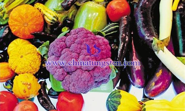 鉬存在於花椰菜等多種食物中