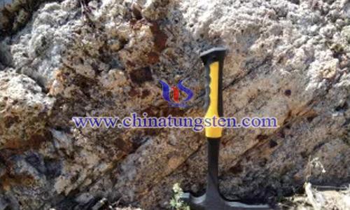 阿勒泰成礦帶褐鐵礦化黑鎢礦化石英脈
