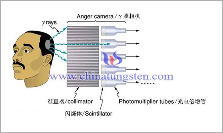 アンガーカメラに適用されたタングステン合金コリメータ