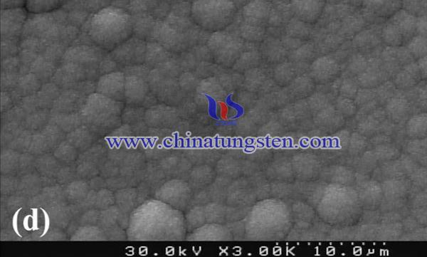 WO3薄膜的FESEM圖像