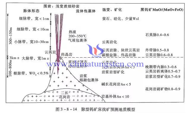 脉型钨矿床找矿预测地质模型