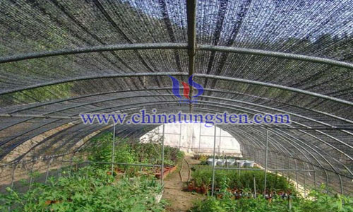 thermal insulating agricultural membrane photo
